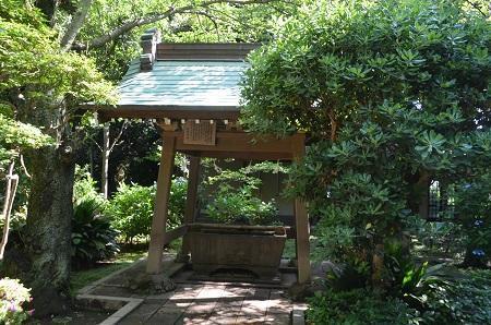 20190611江の島神社32