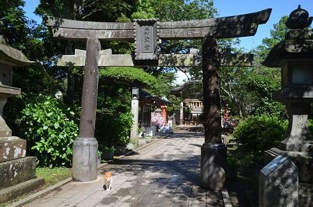20190611江の島神社33