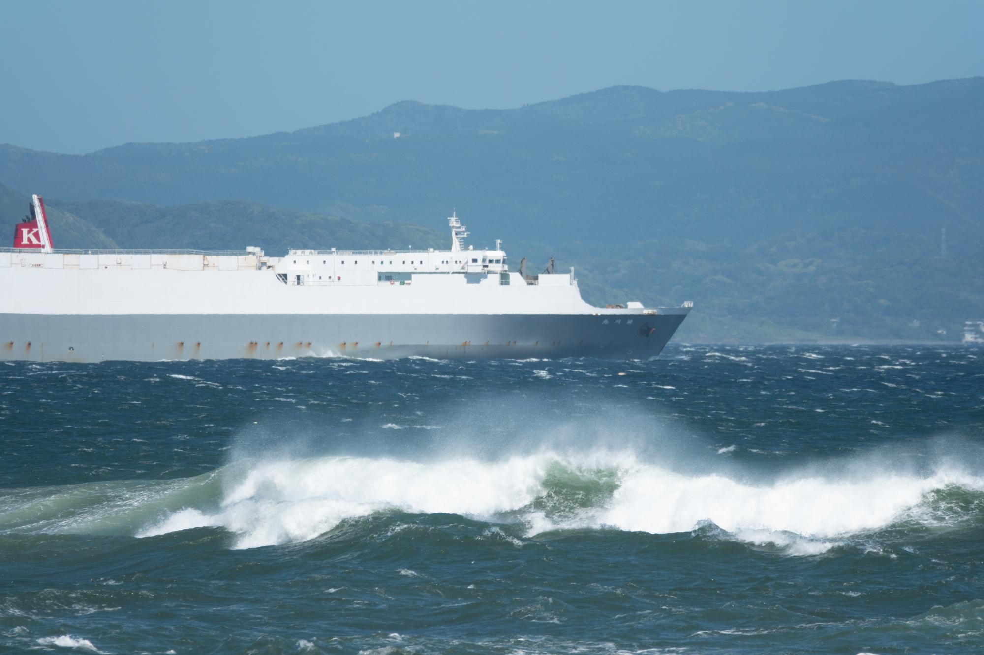 20190616-内航定期運航船