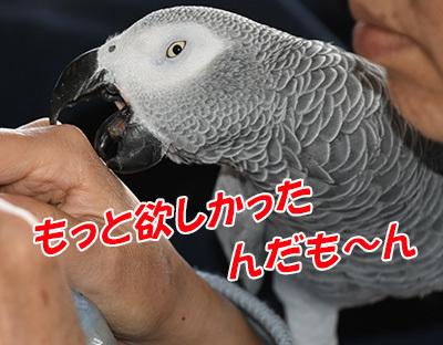 8_もっと