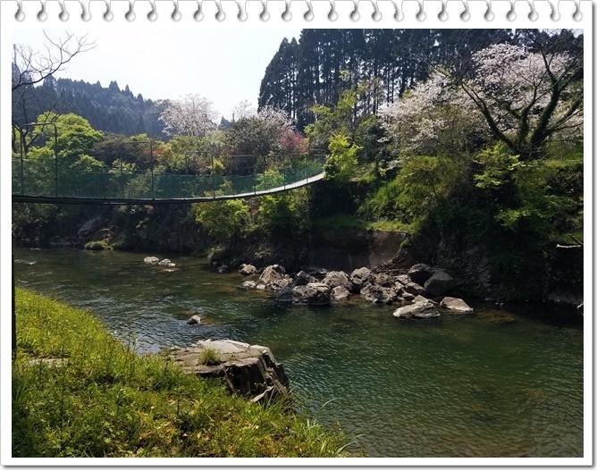 桜と温泉1-2