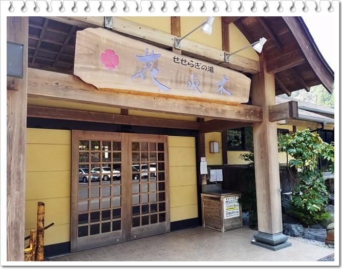 桜と温泉1-4