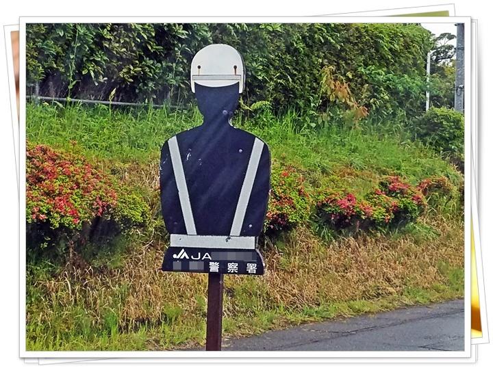 宮崎の道路