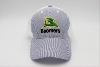 Boomers CAP front