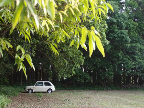 森の中の駐車場