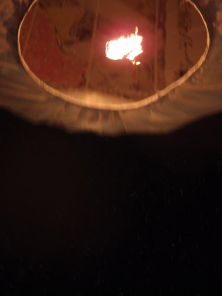 たんぽの火