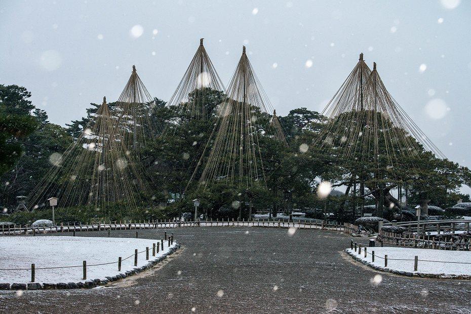 2019.02.08雪化粧の兼六園 1 (14)