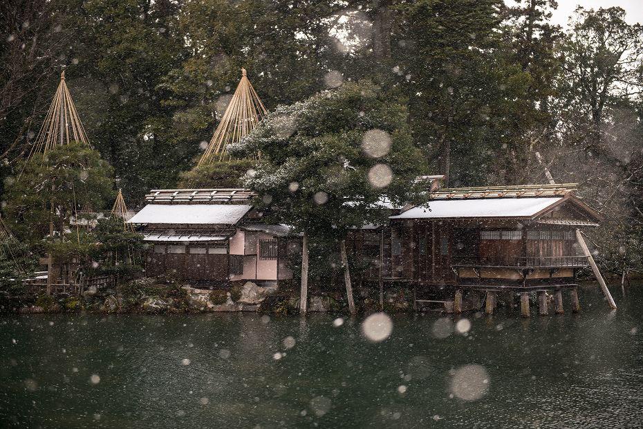 2019.02.08雪化粧の兼六園 1 (18)