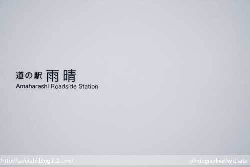 富山県 高岡市 道の駅 雨晴 駐車場 絶景 スポット 撮影 電車 踏切 08