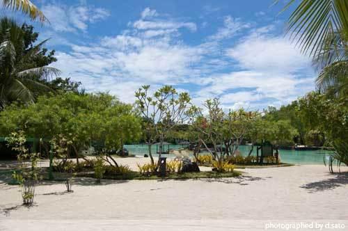 フィリピン セブ島 プランテーション・ベイ・リゾート・アンド・スパ 海外旅行 写真 前編 01