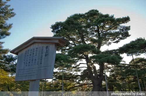 石川県 金沢市 兼六園 日本有数の名園 文化財指定庭園 特別名勝 駐車場 混んでいた 10