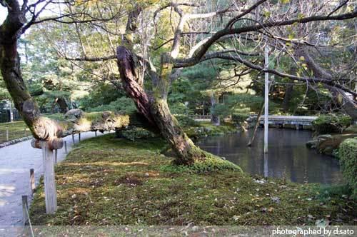 石川県 金沢市 兼六園 日本有数の名園 文化財指定庭園 特別名勝 駐車場 混んでいた 11