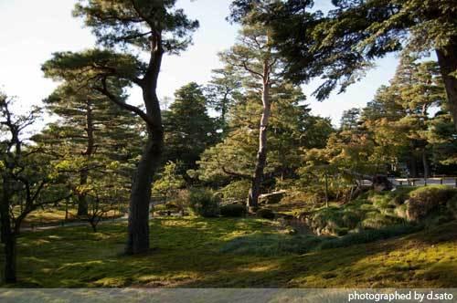 石川県 金沢市 兼六園 日本有数の名園 文化財指定庭園 特別名勝 駐車場 混んでいた 17