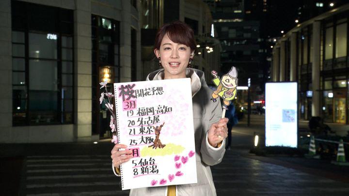 2019年03月09日新井恵理那の画像06枚目