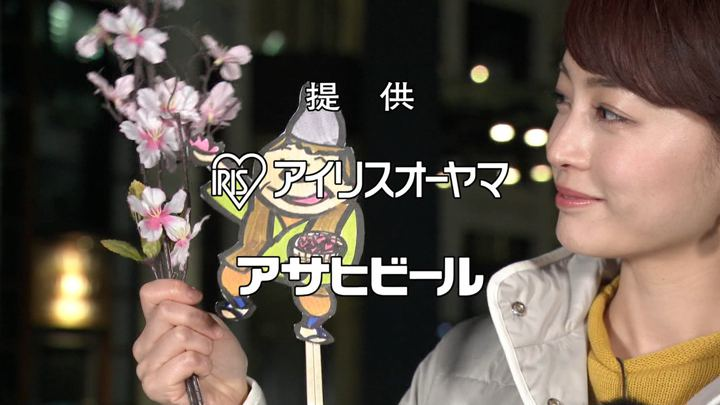 2019年03月09日新井恵理那の画像08枚目