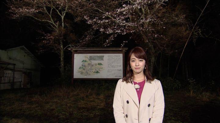 2019年03月30日新井恵理那の画像14枚目