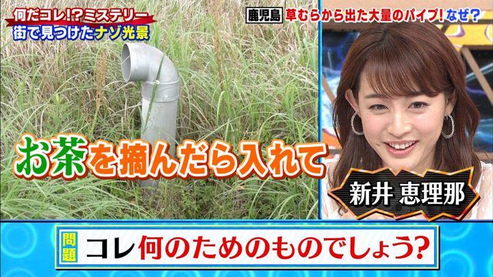 2019年06月12日新井恵理那の画像26枚目