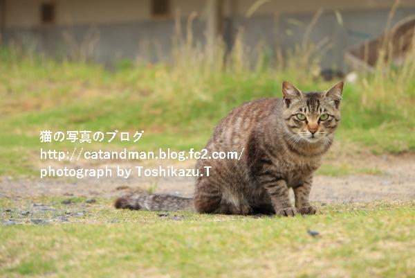 IMG_8267s.jpg