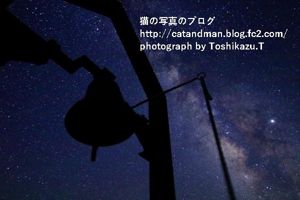 IMG_8501s.jpg