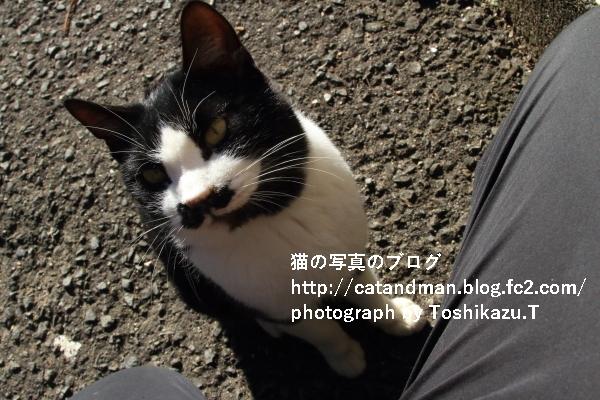 IMG_9444s.jpg