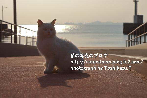 IMG_9877s.jpg
