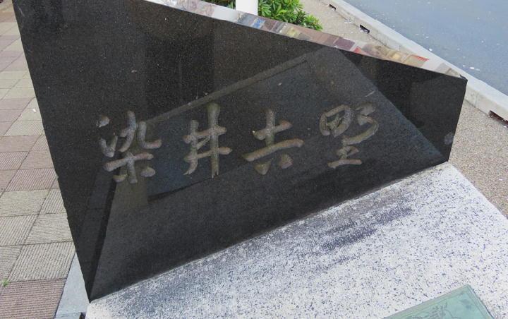 染井吉野-659