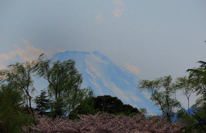 富士山-873