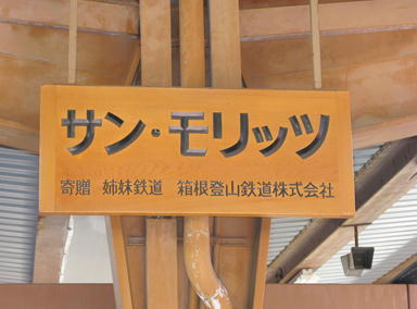 箱根登山鉄道と姉妹-046-3333