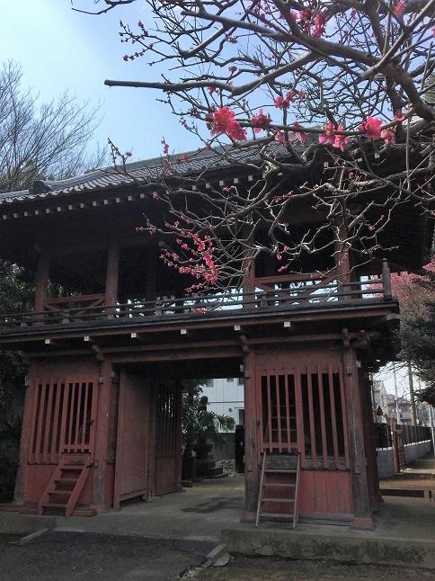 190317 chikumashokudo-26