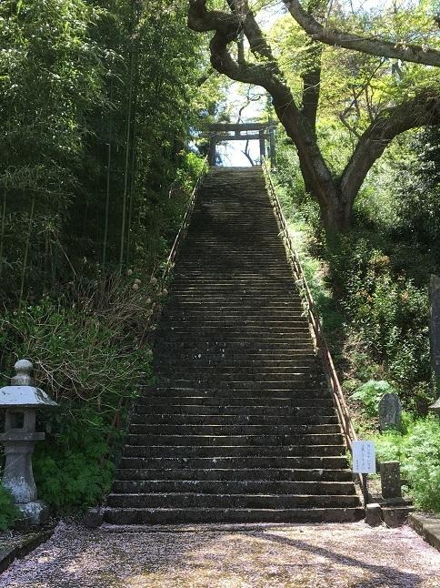 190429 kiyokawa-27