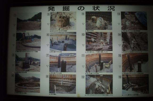 三瓶小豆原埋没林公園 (2)