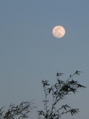 190418-6=宵の口の満月fmONA温泉駐車場