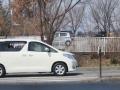 019白い車