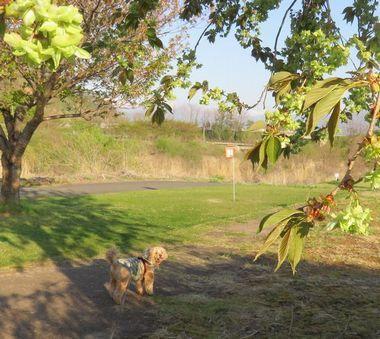 021緑地公園