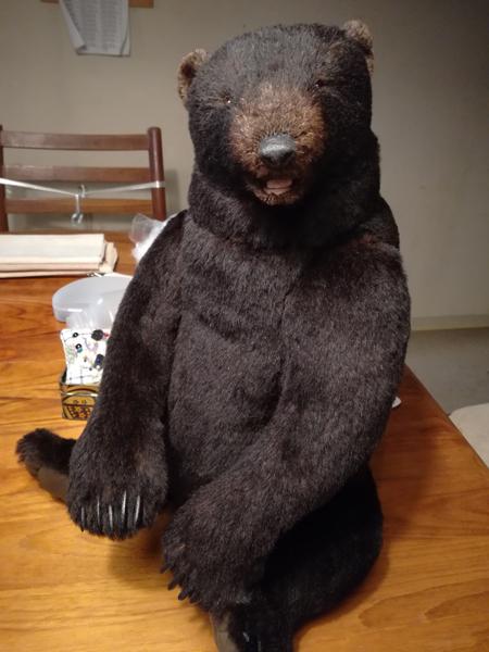 ワイルド熊