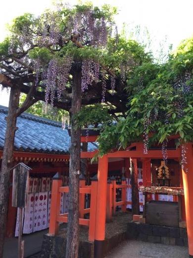 190504奈良春日大社多賀神社
