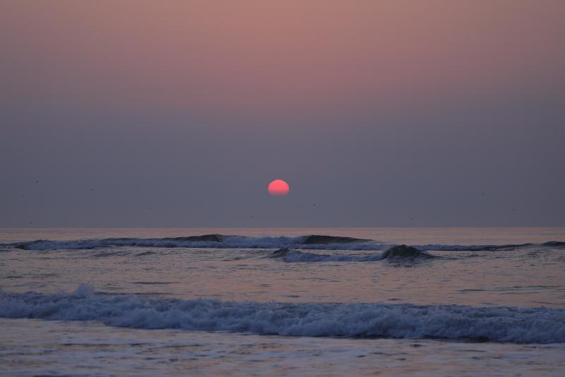 1576 ピンクの太陽