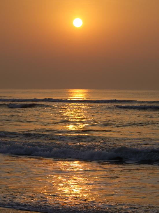 1678 黄金の海
