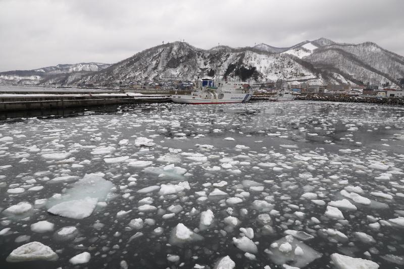 2302 観光船乗り場の流氷