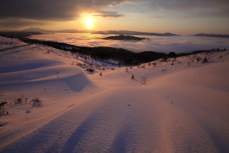 3670 染まる雪の造形