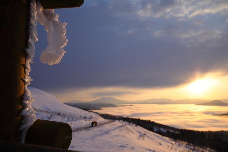 3681 防護柵に付いた雪