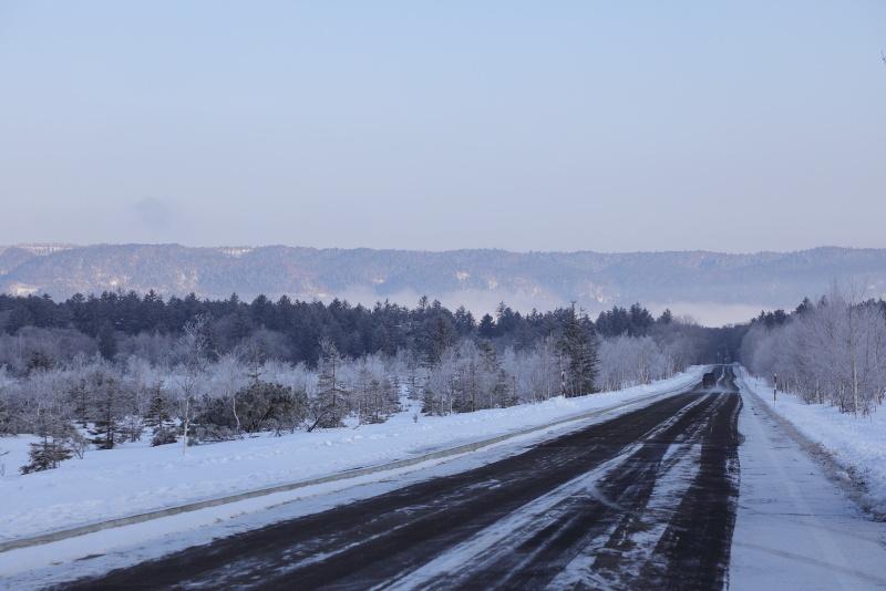 3736 霧氷した朝