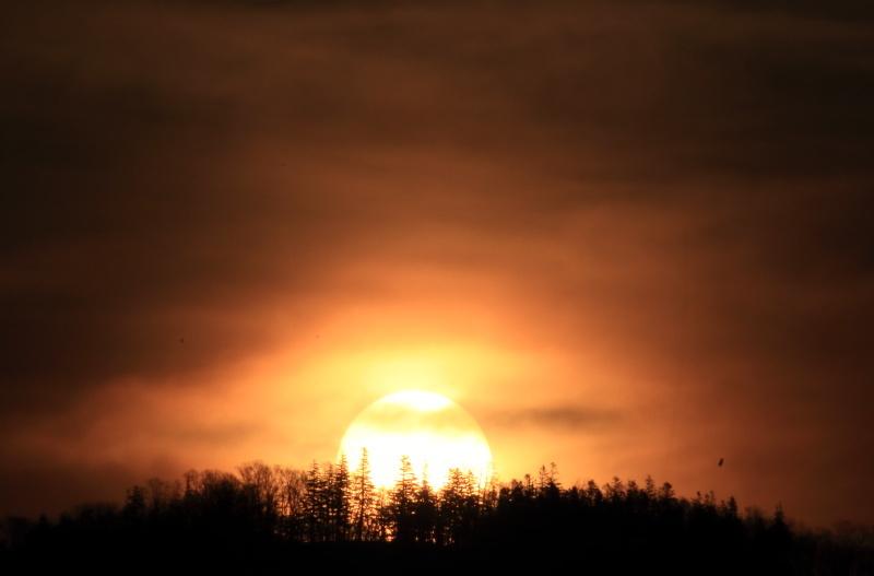 6004 然別湖の日の出