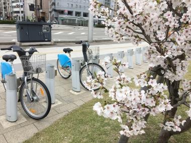 桜越し19番ステーション 201904