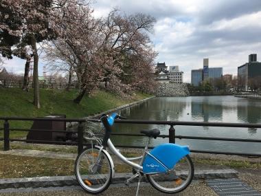 城址公園桜 20190404