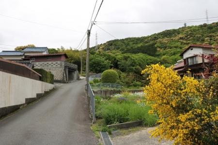 上り坂(2)