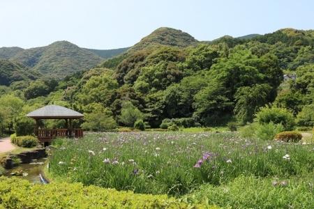 皿山公園(1)