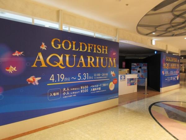 4階金魚の水族館