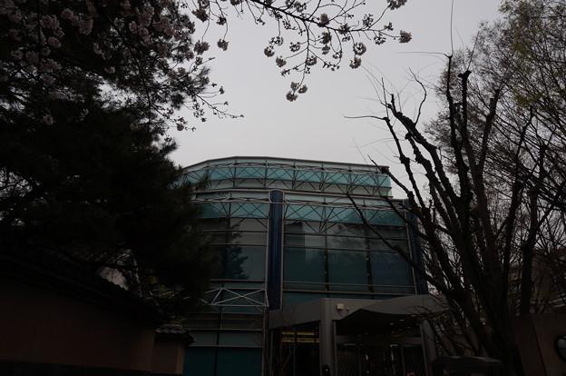 世田谷文学館の外観