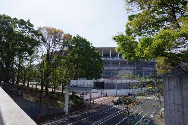 緑と新国立競技場